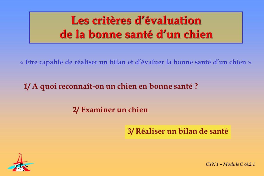 « Etre capable de réaliser un bilan et dévaluer la bonne santé dun chien » CYN 1 – Module C /A2.1 1/ A quoi reconnaît-on un chien en bonne santé ? 2/