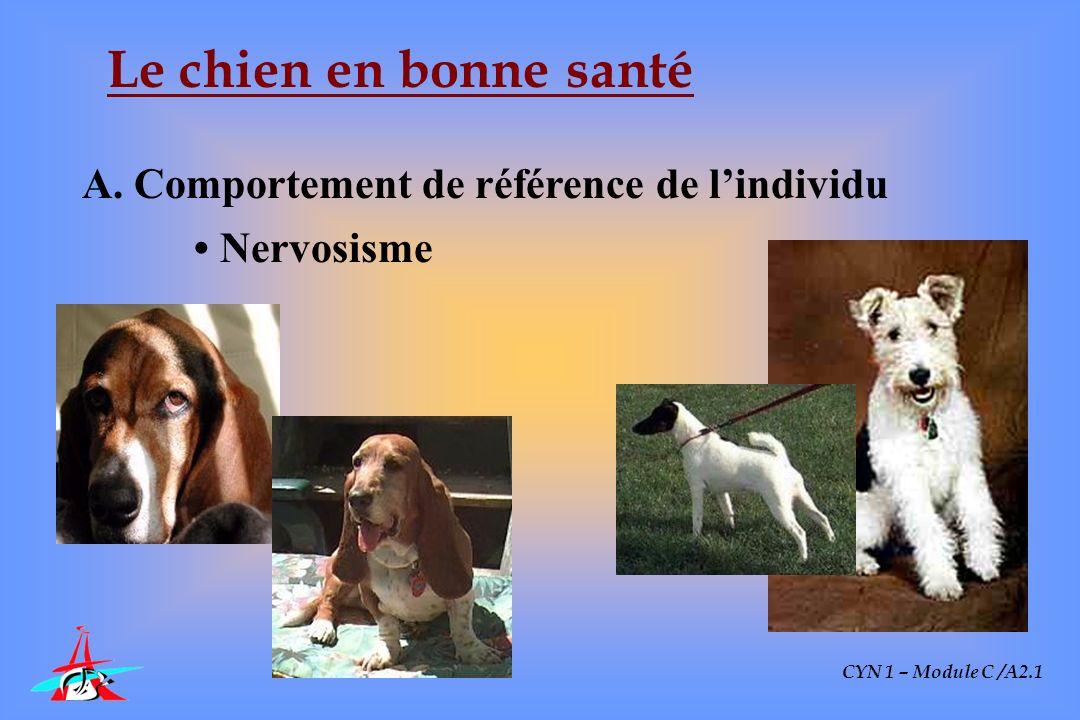 CYN 1 – Module C /A2.1 Le chien en bonne santé Comportement normal en tous points Pelage normal en tous points Excrétats normaux en tous points Absence de problème chronique