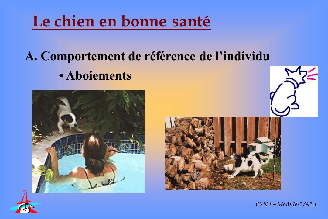 CYN 1 – Module C /A2.1 Le chien en bonne santé A. Comportement de référence de lindividu Aboiements