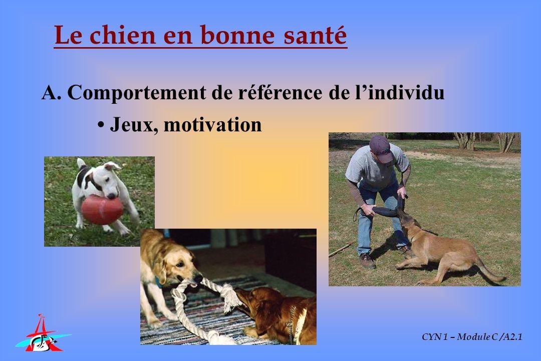 CYN 1 – Module C /A2.1 Le chien en bonne santé A. Comportement de référence de lindividu Jeux, motivation