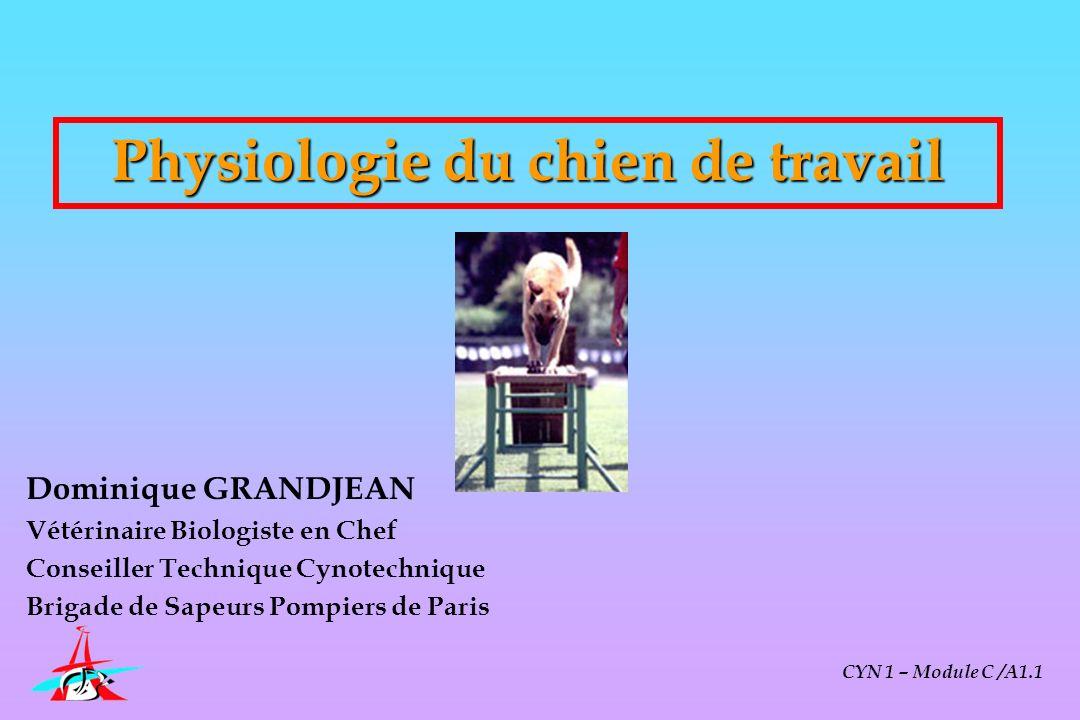 Physiologie du chien de travail « Connaître les éléments de base de la physiologie du chien au travail » Améliorer la performance de travail Prévenir les problèmes pathologiques spécifiques CYN 1 – Module C /A1.1