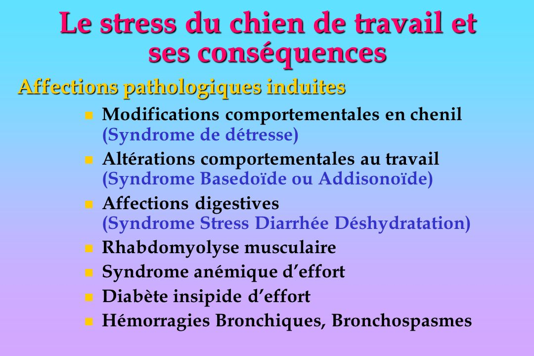 n Modifications comportementales en chenil (Syndrome de détresse) n Altérations comportementales au travail (Syndrome Basedoïde ou Addisonoïde) n Affections digestives (Syndrome Stress Diarrhée Déshydratation) n Rhabdomyolyse musculaire n Syndrome anémique deffort n Diabète insipide deffort n Hémorragies Bronchiques, Bronchospasmes Le stress du chien de travail et ses conséquences Affections pathologiques induites