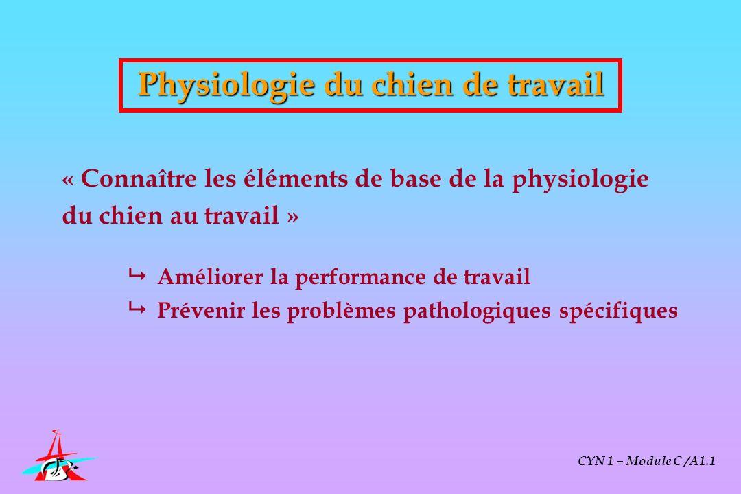 CYN 1 – Module C /A1.1 Conséquences pratiques : préparation physique du chien Les bases de lentraînement physique Grands principes dentraînement Méthodes utilisables Effets biologiques de lentraînement