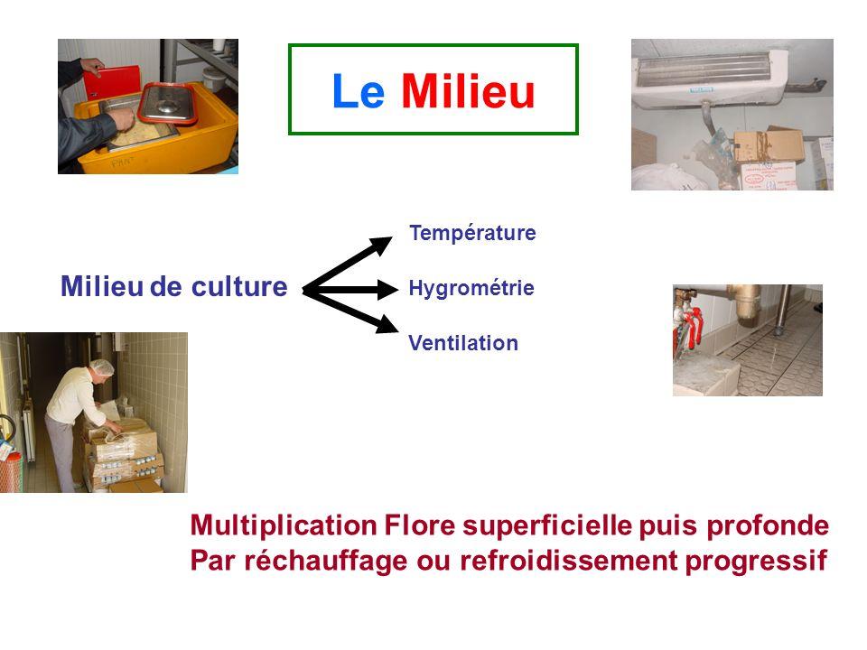 Le Milieu Milieu de culture Température Hygrométrie Ventilation Multiplication Flore superficielle puis profonde Par réchauffage ou refroidissement pr