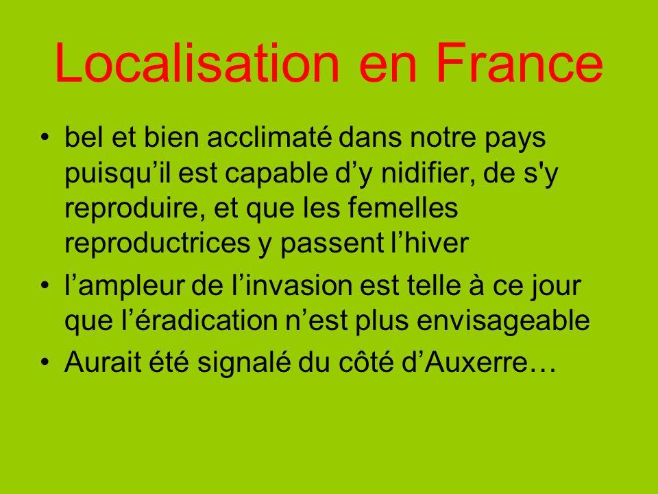 Localisation en France bel et bien acclimaté dans notre pays puisquil est capable dy nidifier, de s'y reproduire, et que les femelles reproductrices y