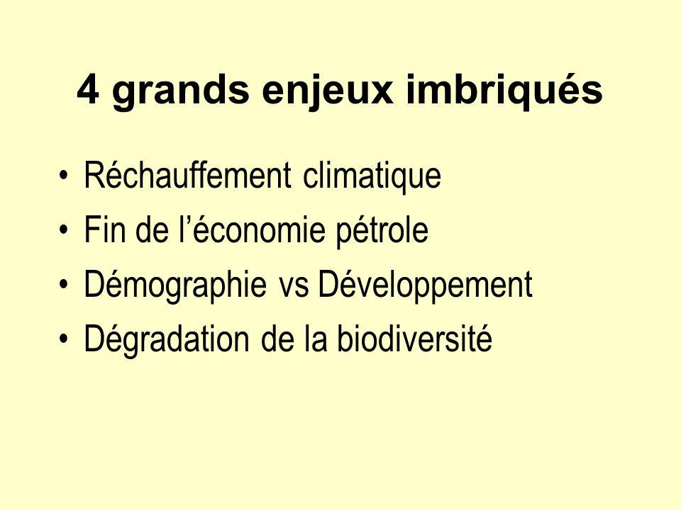 4 grands enjeux imbriqués Réchauffement climatique Fin de léconomie pétrole Démographie vs Développement Dégradation de la biodiversité