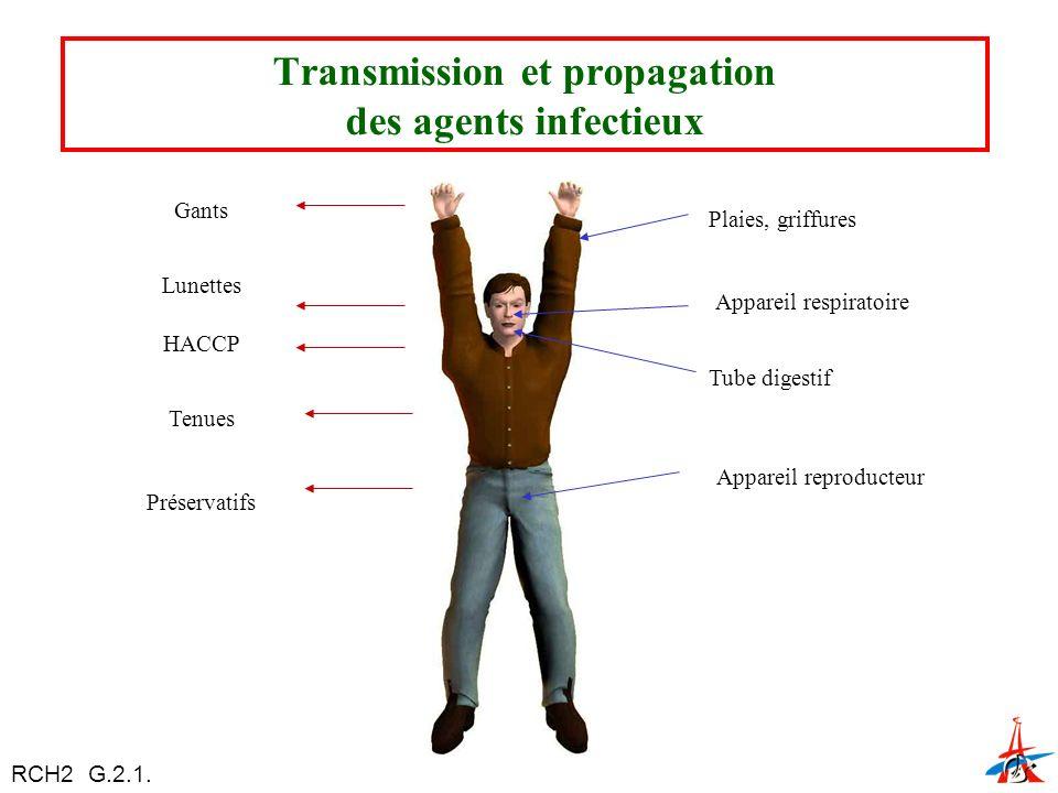 Lunettes Gants HACCP Tenues Préservatifs Plaies, griffures Appareil respiratoire Tube digestif Appareil reproducteur Transmission et propagation des agents infectieux RCH2 G.2.1.