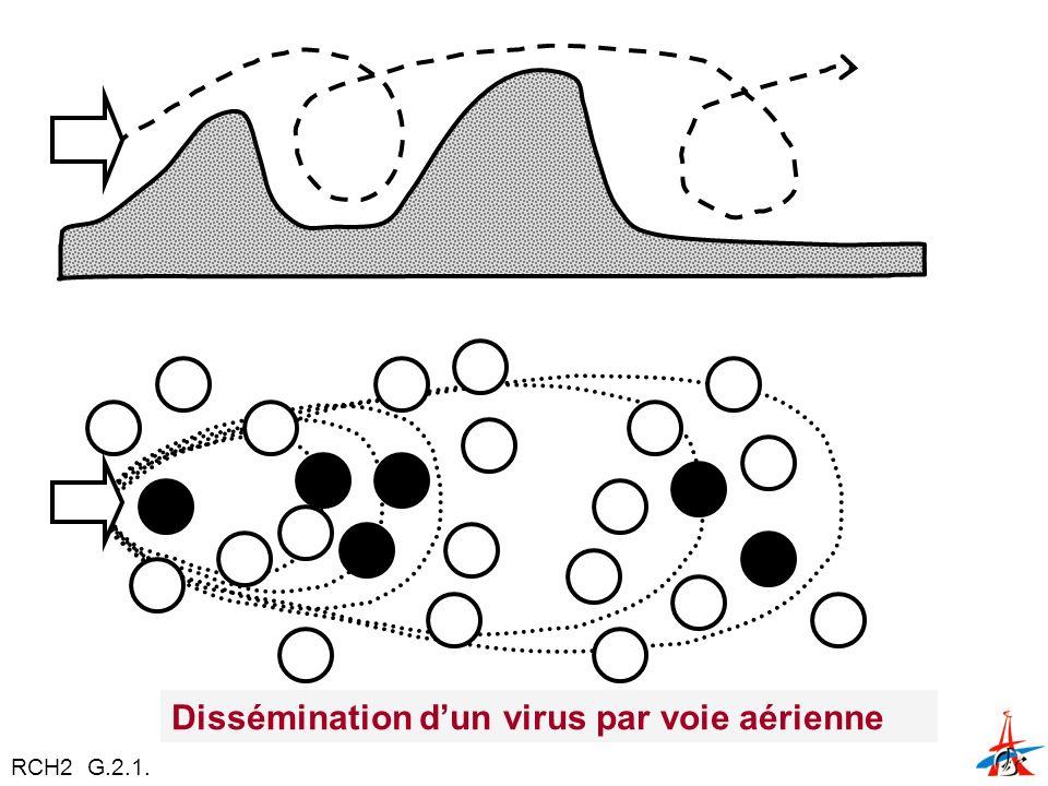 Dissémination dun virus par voie aérienne RCH2 G.2.1.