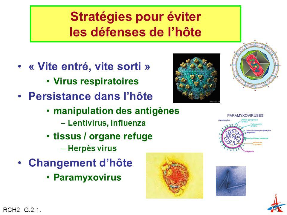 « Vite entré, vite sorti » Virus respiratoires Persistance dans lhôte manipulation des antigènes –Lentivirus, Influenza tissus / organe refuge –Herpès