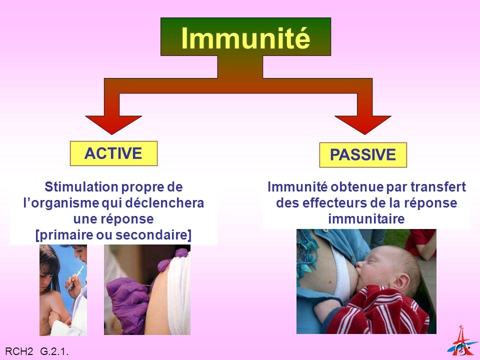 Immunité Stimulation propre de lorganisme qui déclenchera une réponse [primaire ou secondaire] ACTIVE PASSIVE Immunité obtenue par transfert des effecteurs de la réponse immunitaire RCH2 G.2.1.