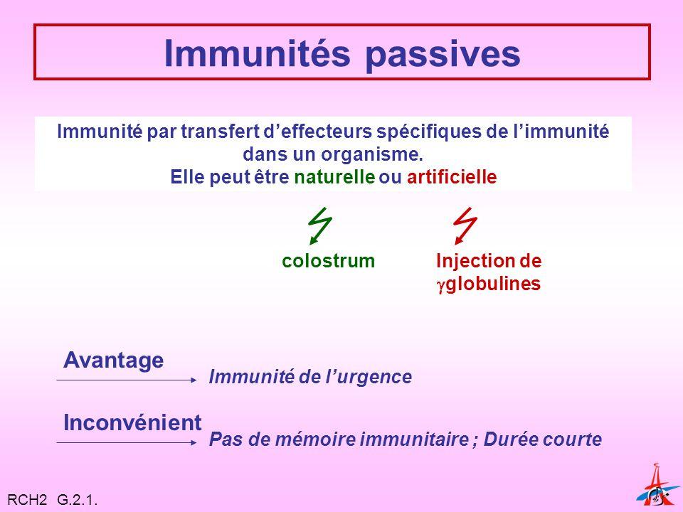 Immunités passives Immunité par transfert deffecteurs spécifiques de limmunité dans un organisme.