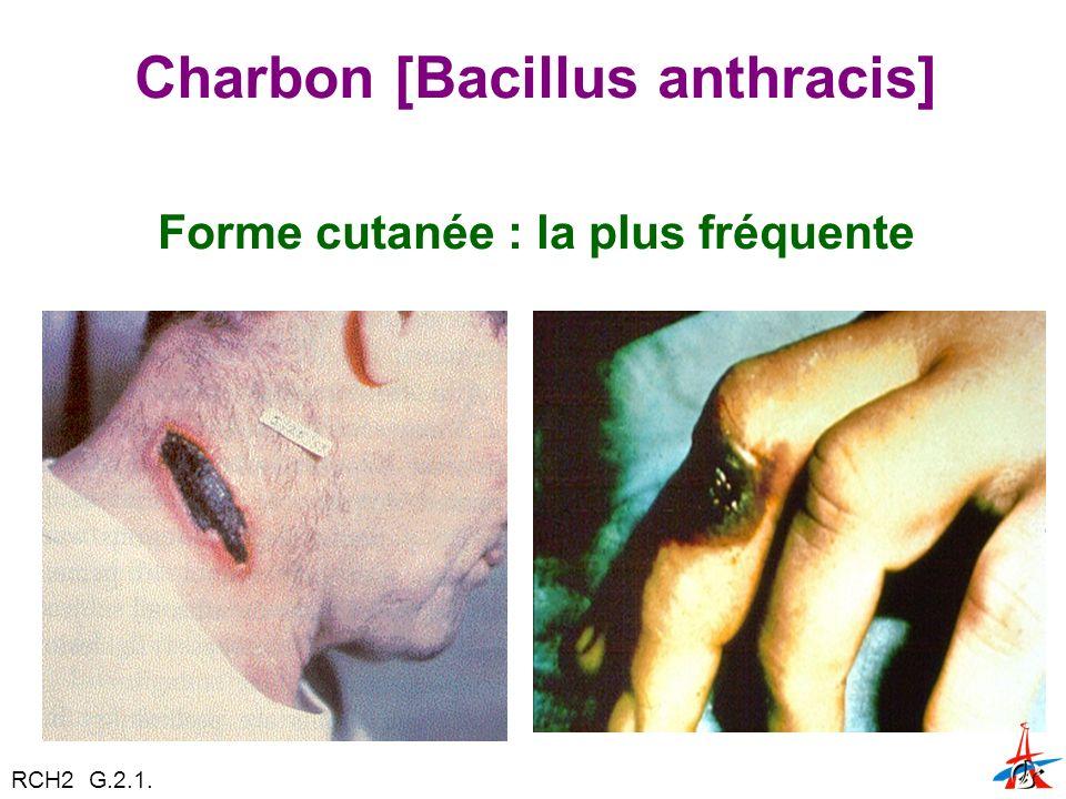 Charbon [Bacillus anthracis] Forme cutanée : la plus fréquente RCH2 G.2.1.