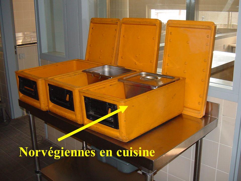 Norvégiennes en cuisine