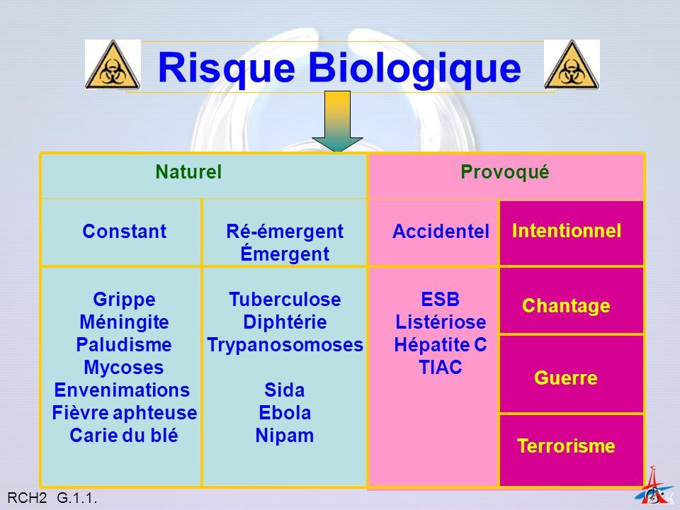 Mortalité humaine liée au risque biologique Constant Émergent Accidentel Intentionnel Menace Terrorisme « psychologique » RCH2 G.1.1.