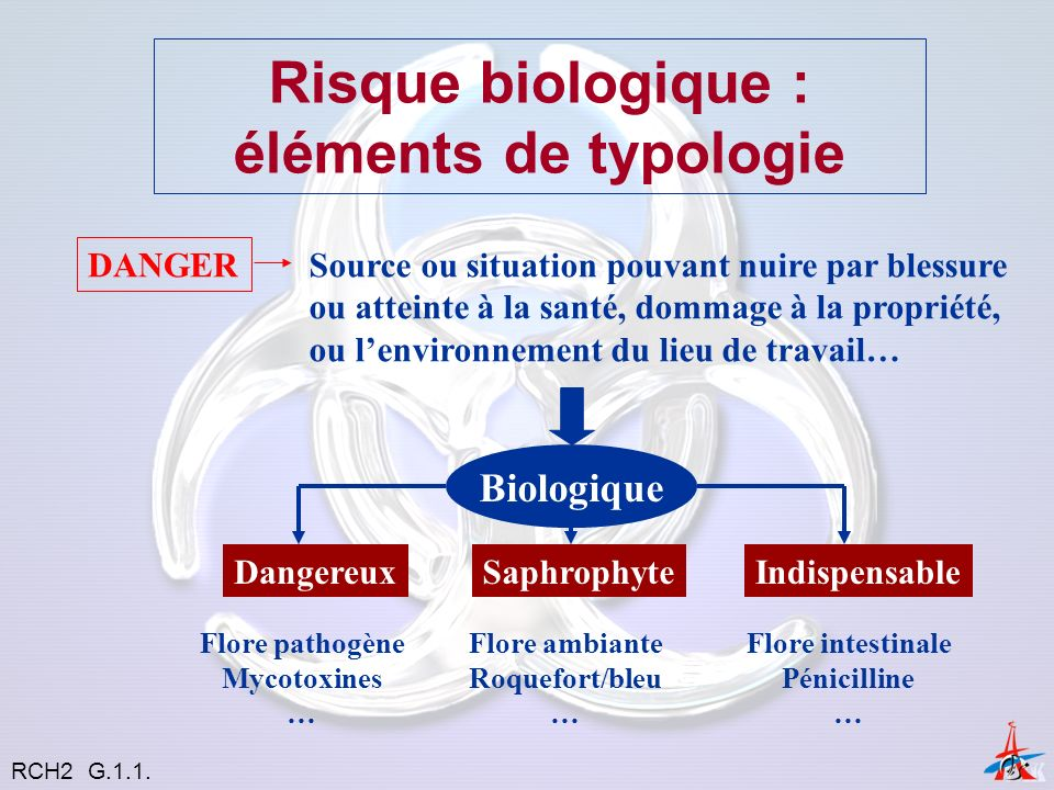 Les Champignons Pouvoir pathogène direct Pouvoir pathogène indirect RCH2 G.1.1.