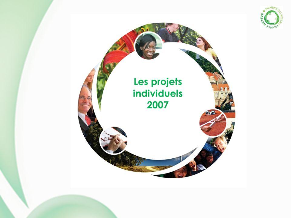 Les projets individuels 2007