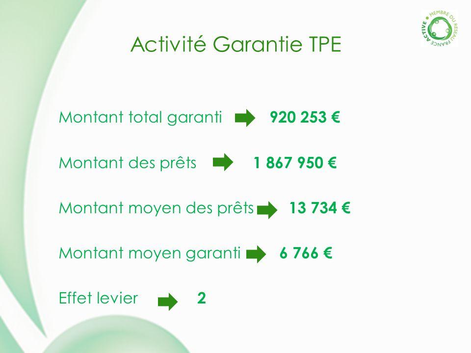 Activité Garantie TPE Montant total garanti 920 253 Montant des prêts 1 867 950 Montant moyen des prêts 13 734 Montant moyen garanti 6 766 Effet levier 2