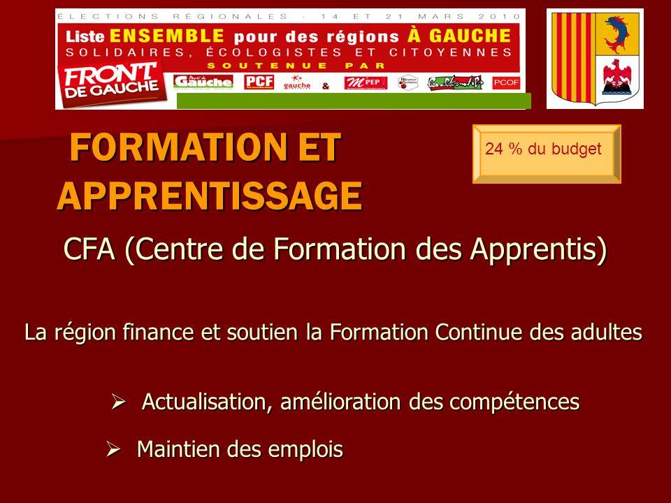 CFA (Centre de Formation des Apprentis) FORMATION ET APPRENTISSAGE 24 % du budget La région finance et soutien la Formation Continue des adultes Maintien des emplois Maintien des emplois Actualisation, amélioration des compétences Actualisation, amélioration des compétences