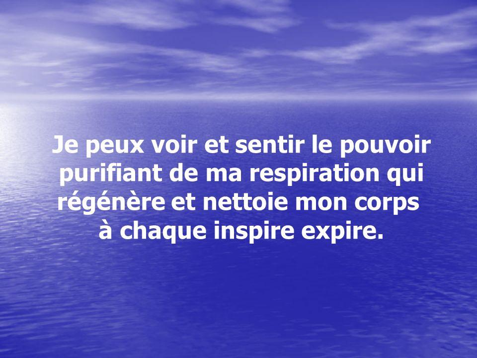 Je peux voir et sentir le pouvoir purifiant de ma respiration qui régénère et nettoie mon corps à chaque inspire expire.