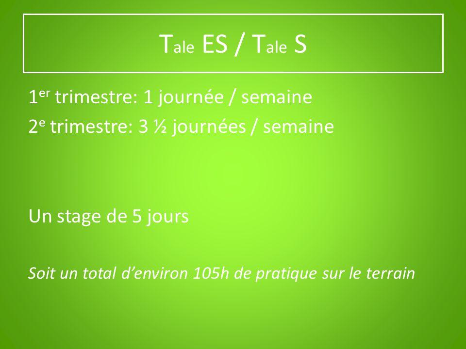 T ale ES / T ale S 1 er trimestre: 1 journée / semaine 2 e trimestre: 3 ½ journées / semaine Un stage de 5 jours Soit un total denviron 105h de pratiq