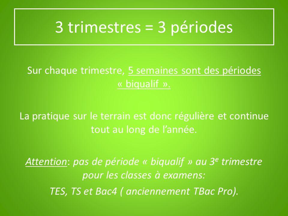 3 trimestres = 3 périodes Sur chaque trimestre, 5 semaines sont des périodes « biqualif ». La pratique sur le terrain est donc régulière et continue t