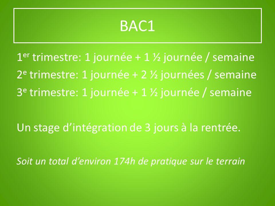 BAC1 1 er trimestre: 1 journée + 1 ½ journée / semaine 2 e trimestre: 1 journée + 2 ½ journées / semaine 3 e trimestre: 1 journée + 1 ½ journée / sema