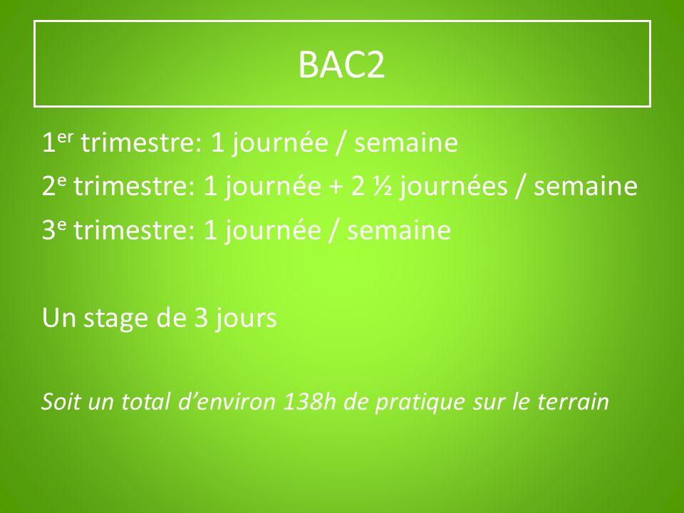BAC2 1 er trimestre: 1 journée / semaine 2 e trimestre: 1 journée + 2 ½ journées / semaine 3 e trimestre: 1 journée / semaine Un stage de 3 jours Soit