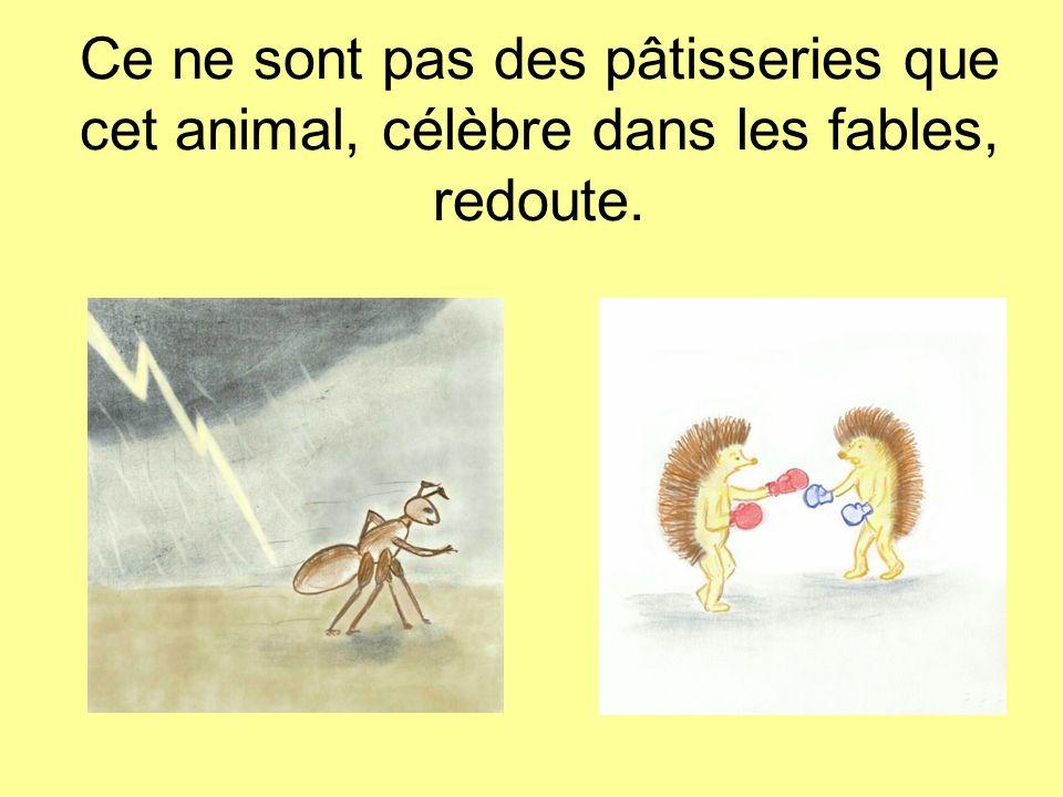 Ce ne sont pas des pâtisseries que cet animal, célèbre dans les fables, redoute.