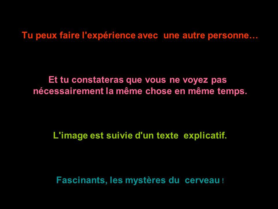 Tu peux faire l'expérience avec une autre personne… Et tu constateras que vous ne voyez pas nécessairement la même chose en même temps. L'image est su