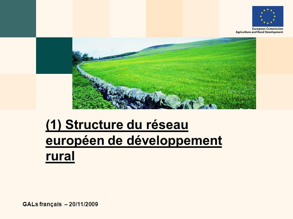 GALs français – 20/11/2009 4 Autorités nationales Organisations actives dans le domaine du développement rural au niveau UE Commission européenne Réseaux nationaux Acteurs ruraux - GALs Les acteurs du RE DR Réseau dexperts chargés de lévaluation