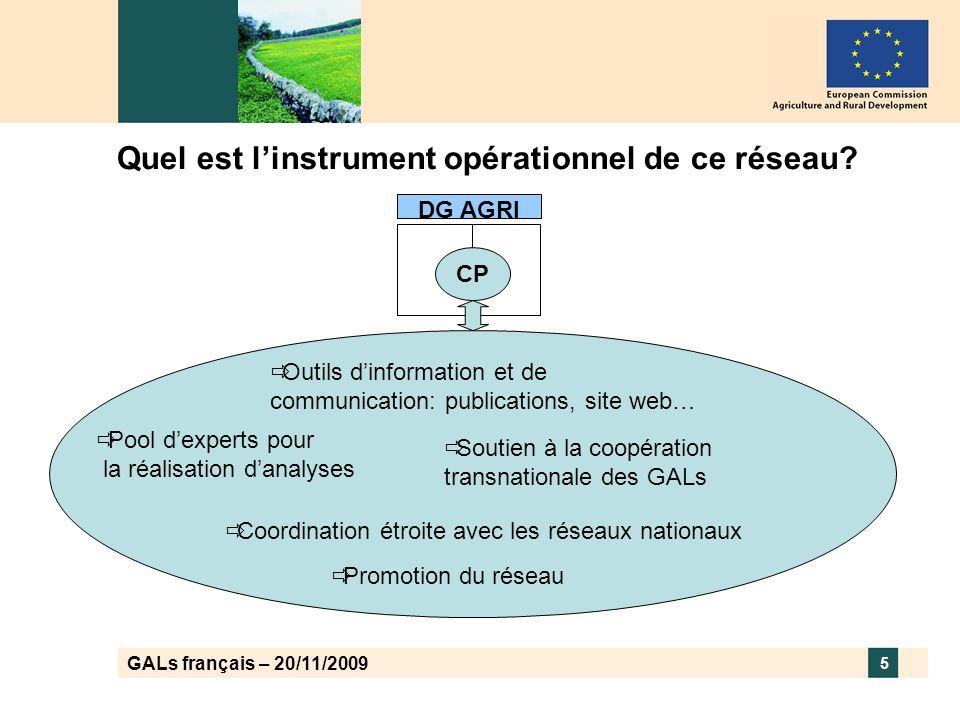 GALs français – 20/11/2009 (4) Les activités spécifiques Leader