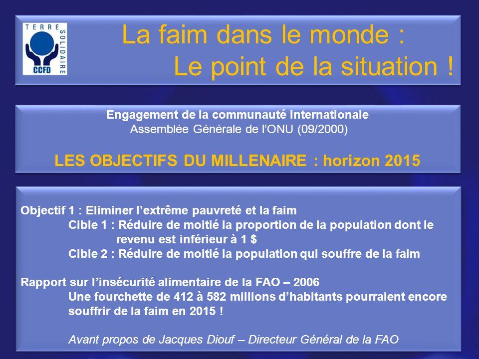 Objectif 1 : Eliminer lextrême pauvreté et la faim Cible 1 : Réduire de moitié la proportion de la population dont le revenu est inférieur à 1 $ Cible