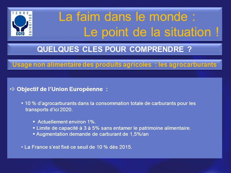 Objectif de lUnion Européenne : 10 % dagrocarburants dans la consommation totale de carburants pour les transports dici 2020. Actuellement environ 1%.