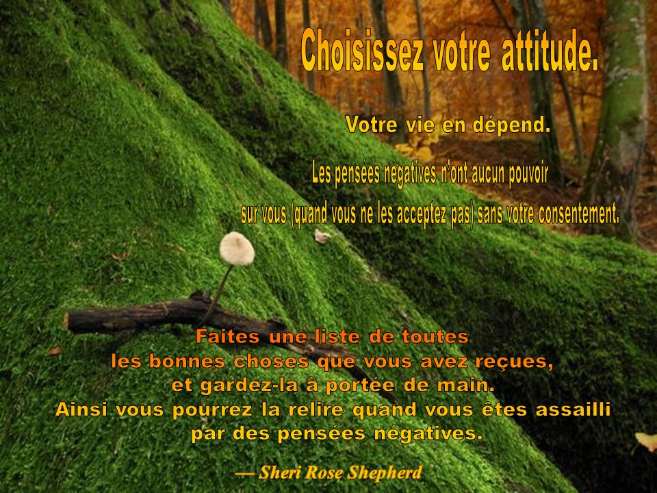 Allumez le son ! Allumez le son ! CLIQUEZ POUR AVANCER Copyright © 2008 Tommy's Window. All Rights Reserved
