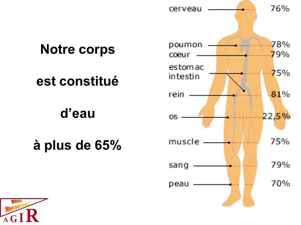 Notre corps est constitué deau à plus de 65%