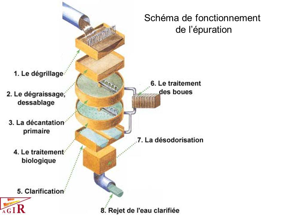 Schéma de fonctionnement de lépuration