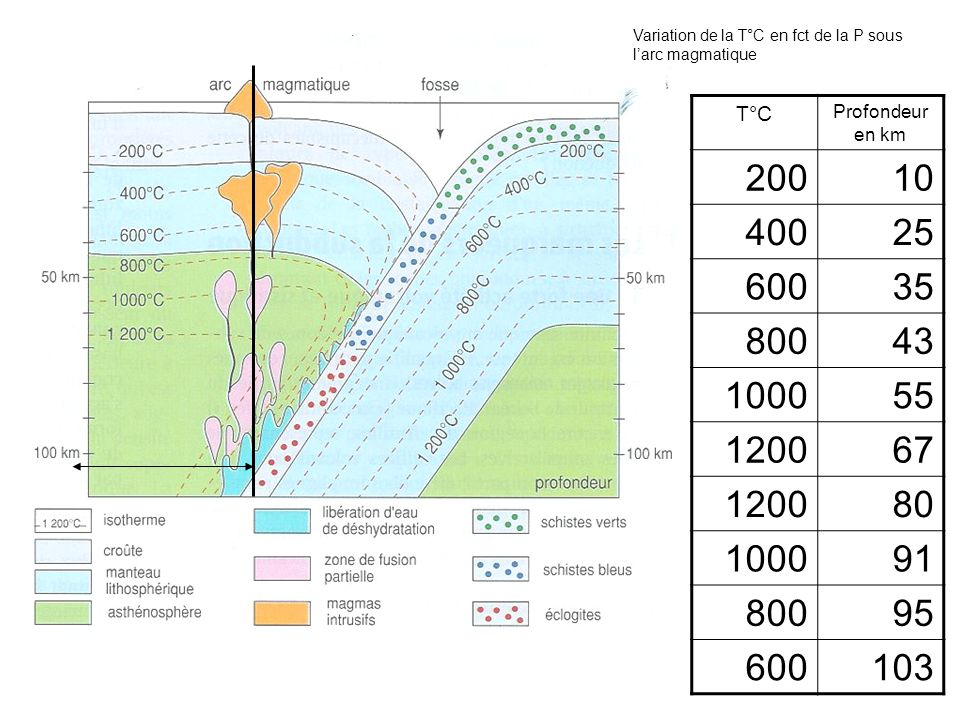 Zone de fusion partielle des péridotites hydratées T°C Profondeu r en km 20010 40025 60035 80043 100055 120067 120080 100091 80095 600103 1.Profil de la T°C en fonction de la profondeur sous larc (à construire) 2.Courbe du solidus des péridotites hydratées.