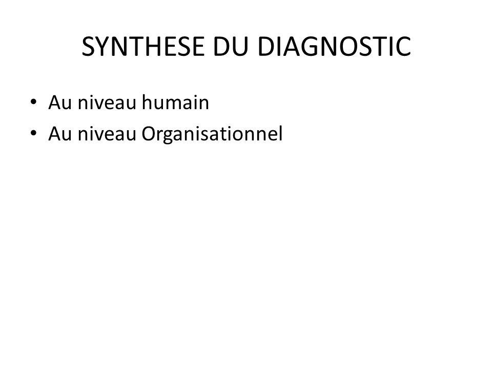 SYNTHESE DU DIAGNOSTIC Au niveau humain Au niveau Organisationnel