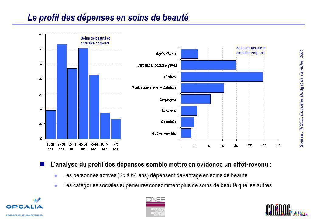 Le profil des dépenses en soins de beauté L'analyse du profil des dépenses semble mettre en évidence un effet-revenu : Les personnes actives (25 à 64
