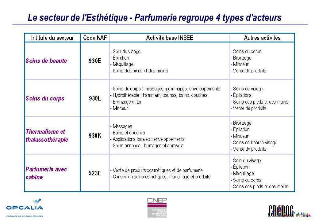 Le secteur de l'Esthétique - Parfumerie regroupe 4 types d'acteurs