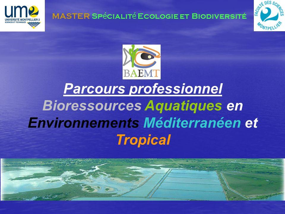 Bioressources Aquatiques en Environnements Méditerranéen et Tropical Acteurs du développement durable des environnements aquatiques Gestion des Bioressources (poissons, crustacés, mollusques, algues et plancton) Fonctionnement des écosystèmes méditerranéens et tropicaux Connaissances du tissu socio-économique de ces environnements