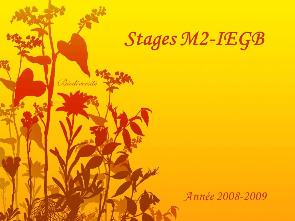 Stages M2-IEGB Année 2008-2009
