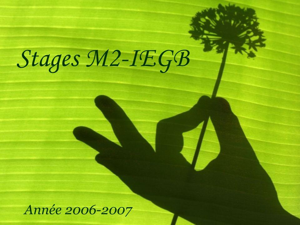 Stages M2-IEGB Année 2006-2007