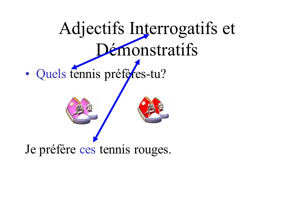 Les Pronoms Démonstratifs, Interrogatifs et Possessifs Français Avancé
