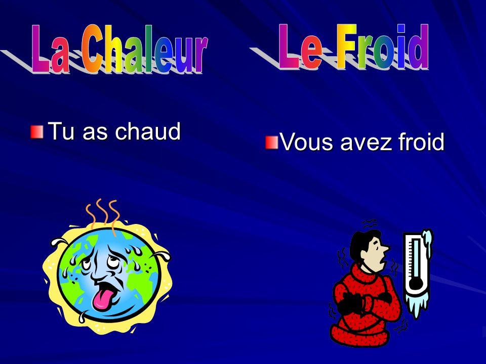 Nous ______ envie de parler français.Elle _____ lair heureux.