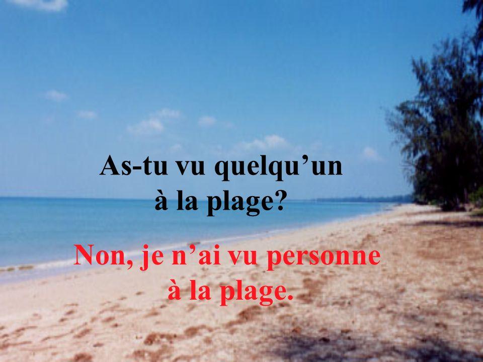 As-tu vu quelquun à la plage? Non, je nai vu personne à la plage.