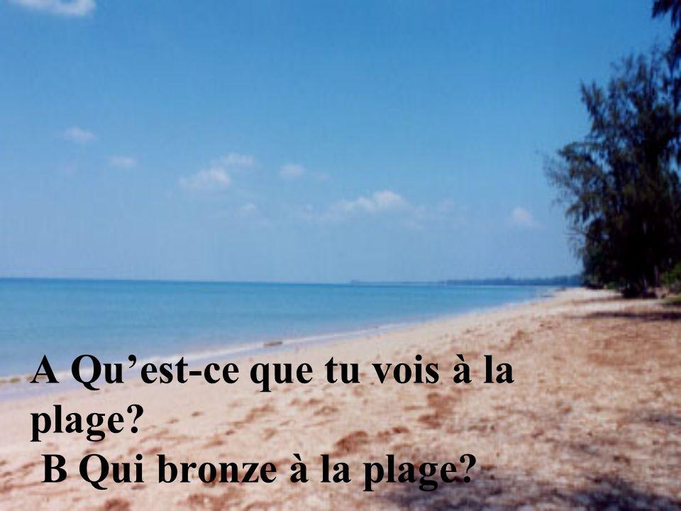 A Quest-ce que tu vois à la plage? B Qui bronze à la plage?