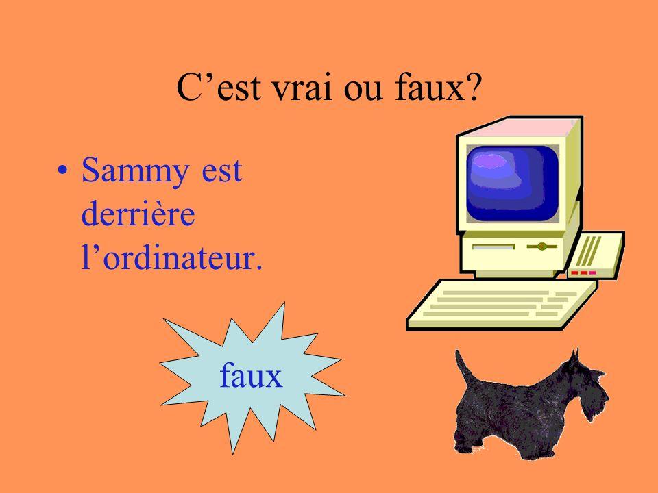 Cest vrai ou faux Sammy est dans lordinateur. faux