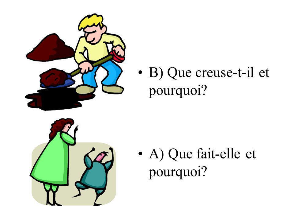 B) Que creuse-t-il et pourquoi? A) Que fait-elle et pourquoi?