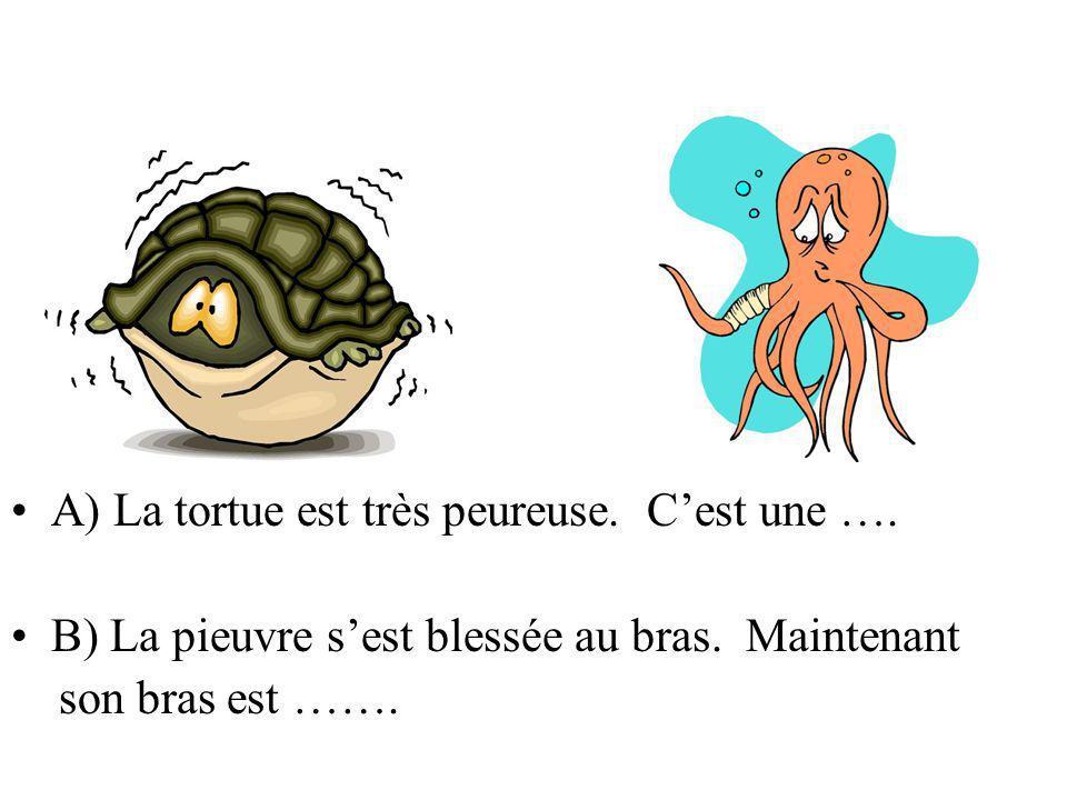 A) La tortue est très peureuse. Cest une …. B) La pieuvre sest blessée au bras. Maintenant son bras est …….